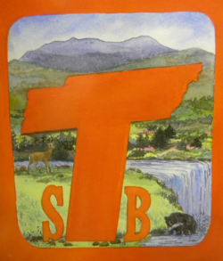 TSB FIRST LOGO